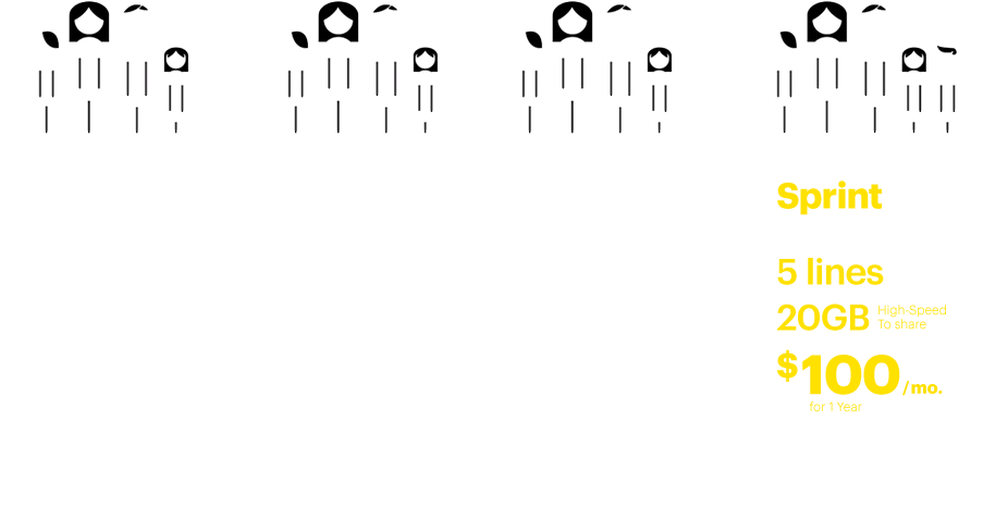 Sprint Family Share Pack